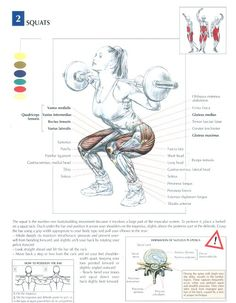 Squats ~ Re-Pinned by Crossed Irons Fitness