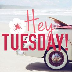 Good Morning, Happy Tuesday Have Great Day! Tuesday Greetings, Good Morning Greetings, Good Morning Wishes, Good Morning Quotes, Morning Memes, Morning Pics, Hello Tuesday, Every Tuesday, Good Morning Tuesday