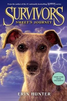 Survivors Sweets Journey
