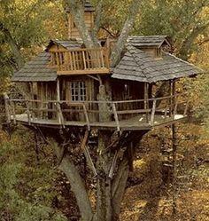 Case sugli alberi (35 Foto) | Bonkaday.com