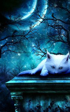 Kerri Ann Crau - Ghost Cat by sabarlynn