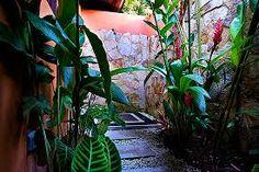 outdoor night lighting tropical ecuador backyard - Google Search