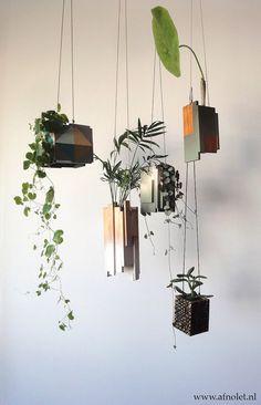 hanging garden.