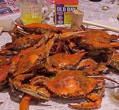 mmm... Steamed Maryland Blue Crabs