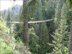 Capilano Suspension Bridge. North Vancouver.