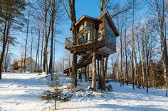 5 Tree House Hotel Vacations That Will Change The Way You Travel