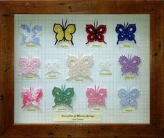 Butterfly Collection - free pattern by Megan Mills here: http://megan.cc/CrochetButterfly/pattern.html