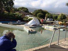 http://www.pueblochico.com Sesión de Fotos a nuestra directora Loli Rodíguez de Azero para la Revista Oceanos de Fred Olsen #Tenerife #LaOrotava