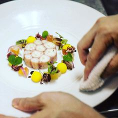 """This dish with fresh octopus is made by @pjrollinson from Singapore: """"I'm executive chef of a fine dining restaurant in singapore called flutes. Originally from australia I have been in singapore for 8 years. Inspiration behind the dish is octopus is ofren synonymous with medeterainean cuisine particularly spanish. So I paired the terrine with ingriedents which lean towards that spanish influence. The octopus is a sustainable product caught off fremantle western australia."""" Fremantle Octopus…"""