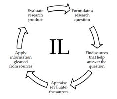 IL cycle