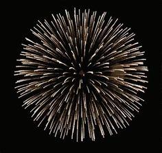 Image result for fireworks rocket animated gif
