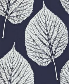 Leaf (110371) - Harlequin Wallpapers - A beautiful large scale leaf motif with intricate detailing in the leaf. Shown here in white on midnight blue. More colours are available. Please request a sample for true colour match. Paste-the-wall product.