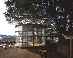 Ring Around A Tree Playground- Tokyo, Japan- Tezuka Architects