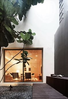 Creating indoor courtyard could be a fun idea for those of you who do not have good weather conditions outdoors, or maybe you want to include part of nature for house decoration Indoor Courtyard, Internal Courtyard, Courtyard Gardens, Rooftop Terrace, Exterior Design, Interior And Exterior, Interior Garden, Modern Interior, Outdoor Spaces