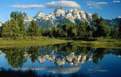 wonderful nature - Google keresés
