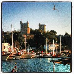 """See 6862 photos and 342 tips from 56532 visitors to Bodrum Kalesi - Sualtı Arkeoloji Müzesi. """"Lovely medieval castle with a fantastic view of the town. Medieval Castle, San Francisco Skyline, Places Ive Been, New York Skyline, Travel, Viajes, Trips, Traveling, Tourism"""