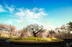 #Landscape #Semarang, Jawa Tengah