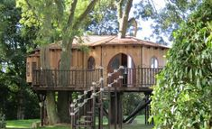 top 10 tree houses design ideas