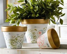 I absolutely love decorating clay pots! They are such a fun surface and you can use almost any craft supplies with terra cotta - paint, Mod Podge, glitter, ribbon, tape, and more. Not only that, but they...