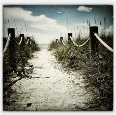 siesta key | Tumblr