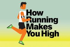 "How Running Makes You High [VIDEO] ... ""We all know the runner's high is real, but science still isn't certain about why it occurs. We spoke with Greg Gerdeman, Ph.D., an assistant professor of biology at Eckerd College, to understand the current theory. It's spelled out in (this) video""   ...  #Running #fitness #run #RunnersHigh #HeartRate #endorphins #brain #brainhealth #mood #blissvibes #runWell"