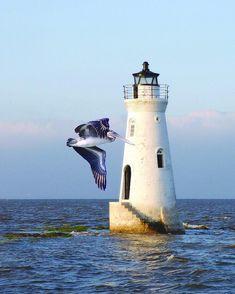 Cockspur Lighthouse, Cockspur Island, Savannah River, Georgia, USA-by pdevivo Lighthouse Lighting, Lighthouse Pictures, Lighthouse Art, Lighthouse Keeper, Garden Lighthouse, Beacon Of Light, Tybee Island, Light Of The World, Water Tower