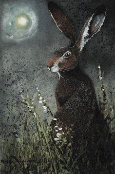 """Moongazer"" by Maggie Vandewalle - Hase Art And Illustration, Illustrations, Street Art, Into The Fire, Rabbit Art, Jack Rabbit, Bunny Art, Totems, Animal Paintings"