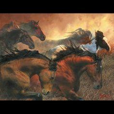 fríz lovas képek - Google keresés