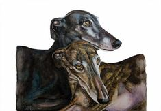Art print of the Spanish Greyhounds Mulata & Cuqui. Limited edition, numbered and signed and comes with Certificate of Authenticity. The size is