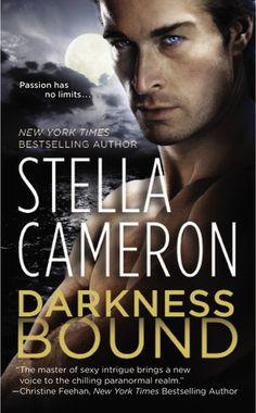 DARKNESS BOUND book # 1 in Stella Cameron's Chimney Rock Series!