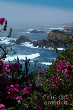 ✯ Mendocino County, California