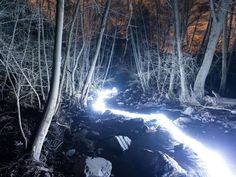 this isn't happiness™ (Into the Woods, David Lados), Peteski Into The Woods, Light Cycle, Light Trails, Colossal Art, Environmental Art, New Moon, David, Light Painting, Land Art