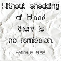 #christian#christianquoted #christianquotes#christianquote #christianquoteoftheday#trustjesus #christianforlife#christianforever #jesuschrist #jesus#jesussaves #jesusmysavior #saviour#followjesus #followjesuschrist #churches#themessager #churchtime#christianquotesdaily #hillsongunited#hillsong #walkwithjesusdaily #healling#christianpages #thebible #wordofgod#bibleverses #bibleverse #verseoftheday