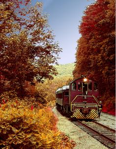 49 Best Fall In Pennsylvania Images Pennsylvania City Life Forests