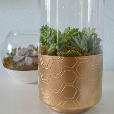 Learn how to make your own textured vases for a quick way to update glass vases and add interest.