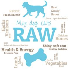What is the BARF Diet and is it Safe to Feed a Dog Raw Food? Learn the Facts about Canine Digestion and Raw Bones