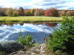 Fall in the Annapolis Valley is stunning. And there are so many ways to enjoy it. I share 6 of my favorites with you below. Annapolis Royal, Annapolis Valley, Fall Picnic, Bridgetown, Hello Weekend, Cape Breton, Weekend Plans, Stunning View, Great Places