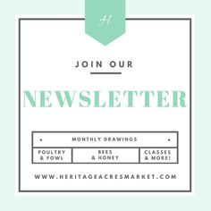 Join our newsletter for more great products and blog articles