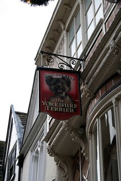 The Yorkshire Terrier Pub sign in York, England UK.