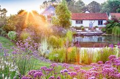 Explore our Swimming Pond and Natural Swimming Pool gallery, showcasing the environmentally-friendly alternative to Swimming Pools. Swimming Pool Pond, Natural Swimming Ponds, Natural Pond, Contemporary Garden Design, Landscape Design, Backyard Pool Designs, Backyard Landscaping, Garden Features, Outdoor Pool