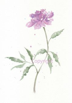 Fine art watercolor painting, bloom, blossom, flower art, abstract DAHLIA WATERCOLOR GICLEE, giclee print, flower interest 8x10 via Etsy