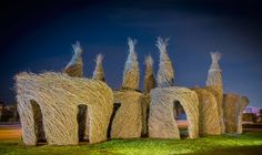 Out in Front - Patrick Dougherty