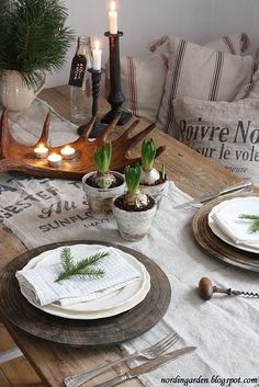 Rustic tablescape by angelia with paper whites, French linens, and pine sprigs