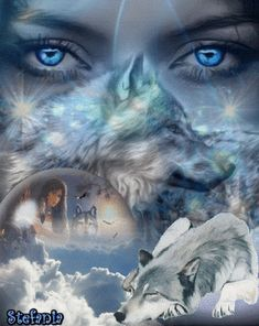 Guardian through the night Foto com animação::Well Here Is Them Blue Eyes. Native American Wolf, Native American Pictures, Native American Artwork, American Indian Art, Fantasy Wolf, Fantasy Art, Wolf Pictures, Animal Pictures, Indian Wolf