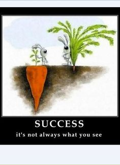 Success is not always what you see / El éxito no es siempre lo que parece