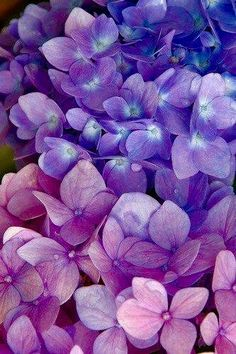 Pastel Purple Flowers Easy Flower Crafts That Anyone Can Do Arts and crafts can be innovative expres