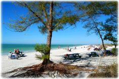 Fort Desoto with the blue Gulf of Mexico on 1 side, Tampa Bay on the other side, Florida