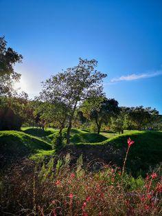 Die Toskana ist bei Kulturinteressierten ebenso beliebt wie bei Weinliebhabern. Die Toskana lässt aber auch das Herz vieler Golfer höher schlagen. Denn sie bietet einige der schönsten Golfplätze Italiens. Somit kann man also eine Kultur- oder Wein-Rundreise bestens mit einer Golfrunde verbinden. #golf #reisetipps Golfer, Hotels, Vineyard, Outdoor, Green Landscape, Cypress Trees, Lake Garda, Tuscany
