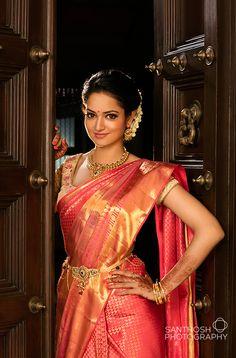 model wearing a Kanchipuram Silk Saree.