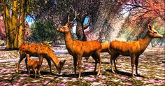 "Check out the Second Life Pic of the Day, ""Oh deer..."" by Keres Bikcin. Don't forget to check out Second Life on Tumblr, Facebook and Google Plus"